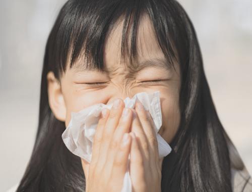鼻の病気 ごしま耳鼻咽喉科クリニック